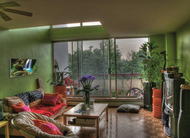 Как правильно разместить комнатные растения в интерьере?