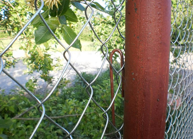 Как сделать забор из сетки рабицы своими руками?