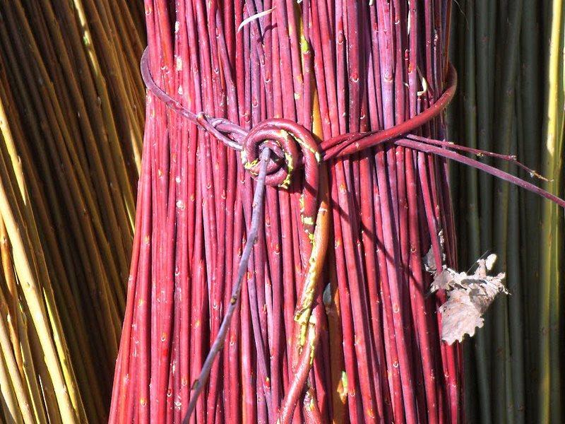 орешник для плетеного забора