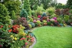 Как правильно высаживать кустарники