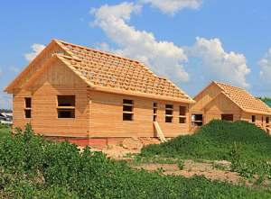 Из какого дерева лучше строить дом