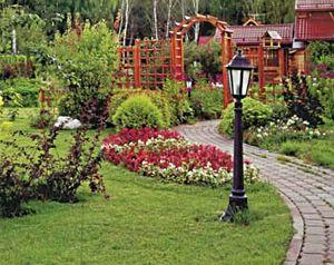 Дизайн садового участка своими руками.