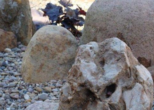 Установка камней для рокария