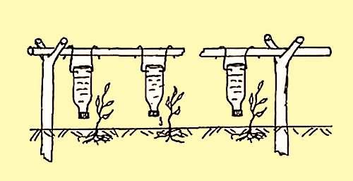 Капельная система полива своими руками