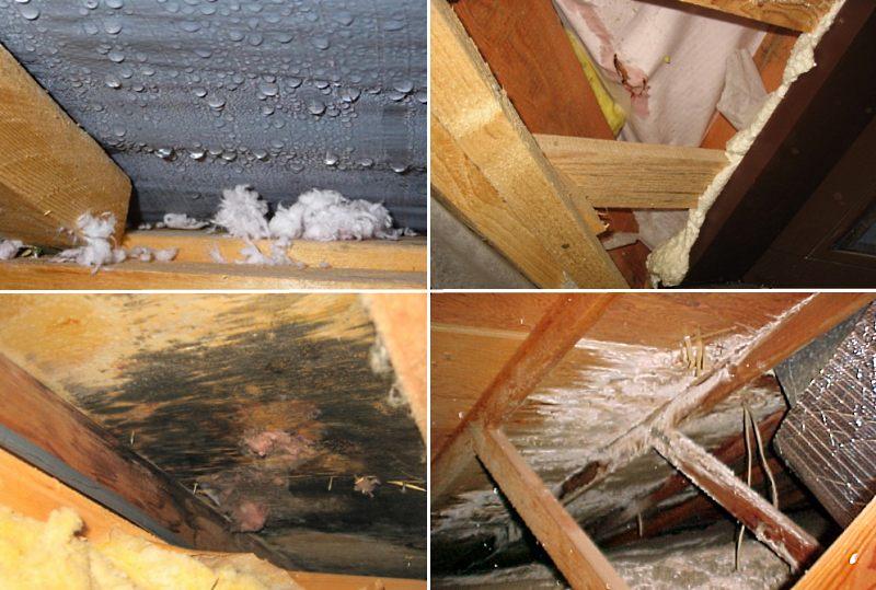 Как утеплить крышу дома изнутри, чтобы не было конденсата?